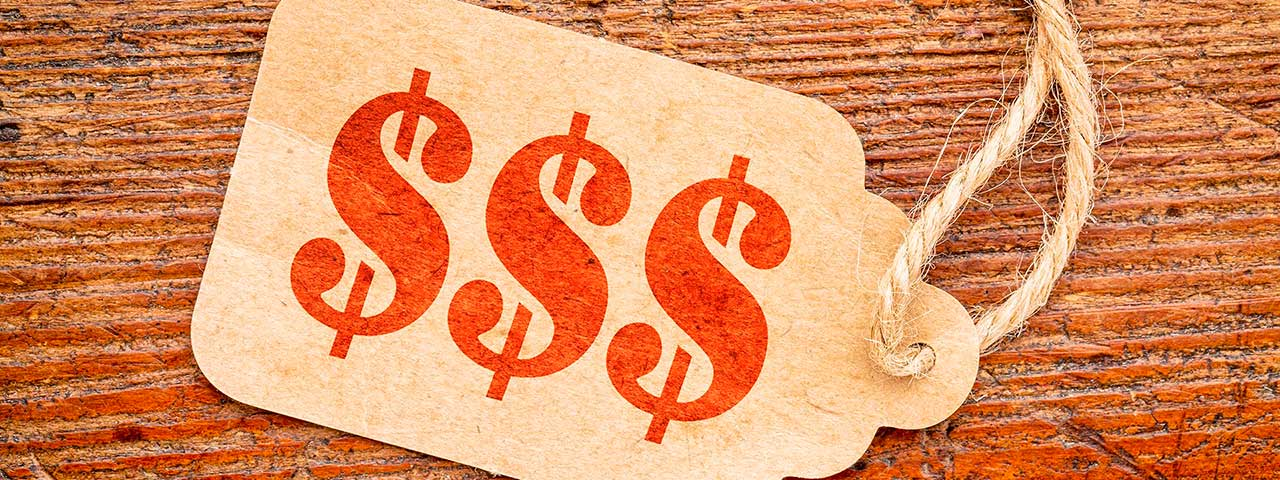 PixoLabo - Website Costs